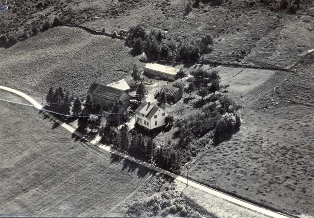 "Garden ""Nybø"" på Øvre Sandvik ca 1956"